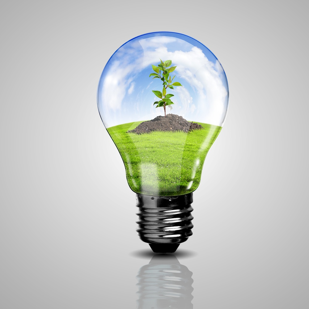 Electric light bulb and a plant inside it as symbol of green energy.jpeg